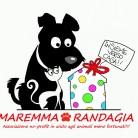 Maremma Randagia
